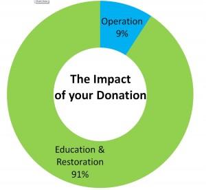 Donation Impact