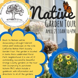 Social Media_Native Plant Sale